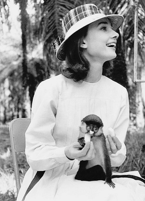 Audrey Hepburn Elegance